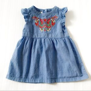Toughskins Embroidered Cotton Infants Dress